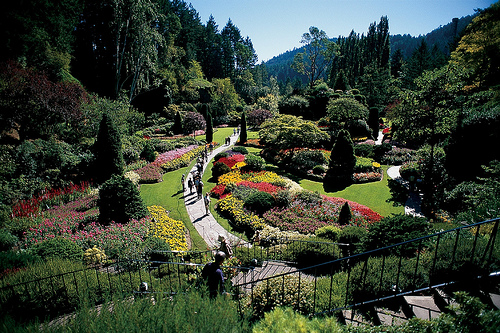 Top 5 Things To Do In Victoria British Columbia