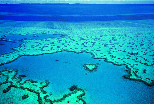 The Great Barrier Reef by Tourism Queensland