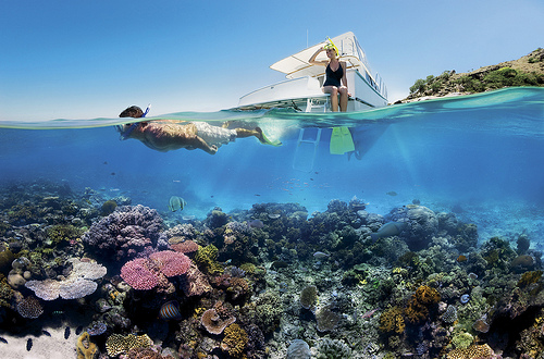 Reef Snorkelling by Tourism Queensland