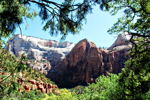 Zion National Park in Summer (photo credit: Ashley Mikulik)