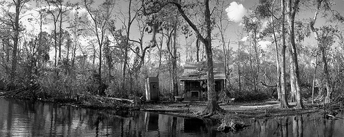 Manchac Swamp - Louisiana