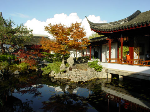 The Chinese garden, just one of the best things to do in Vancouver