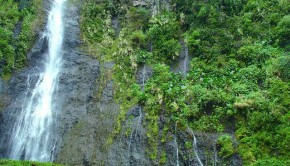 Tahiti Waterfall