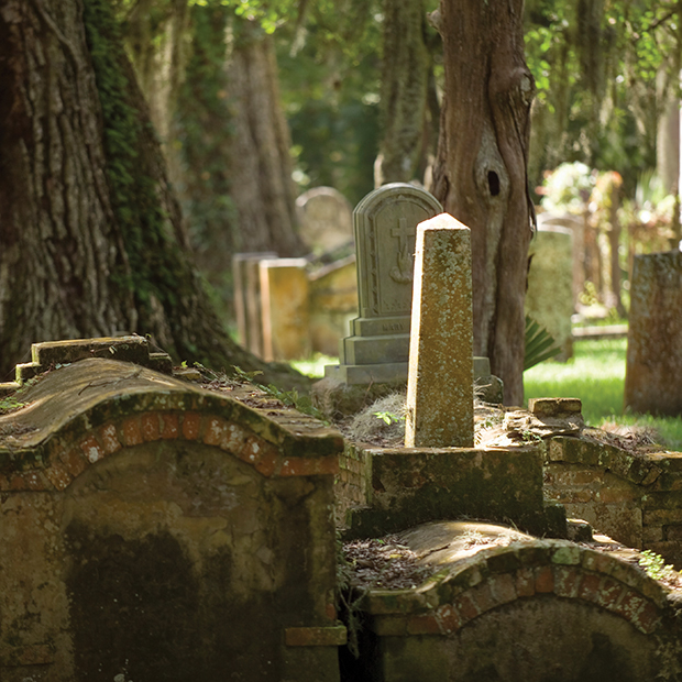 old-overgrown-graveyard-in-st-augustine-florida
