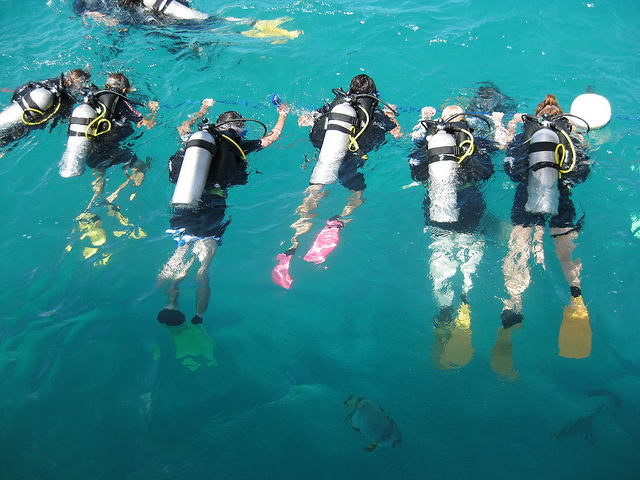 Divers in Great Barrier Reef