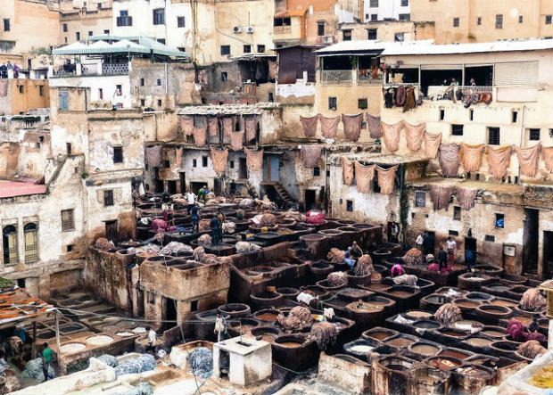 leather tanning in Fez Morocco