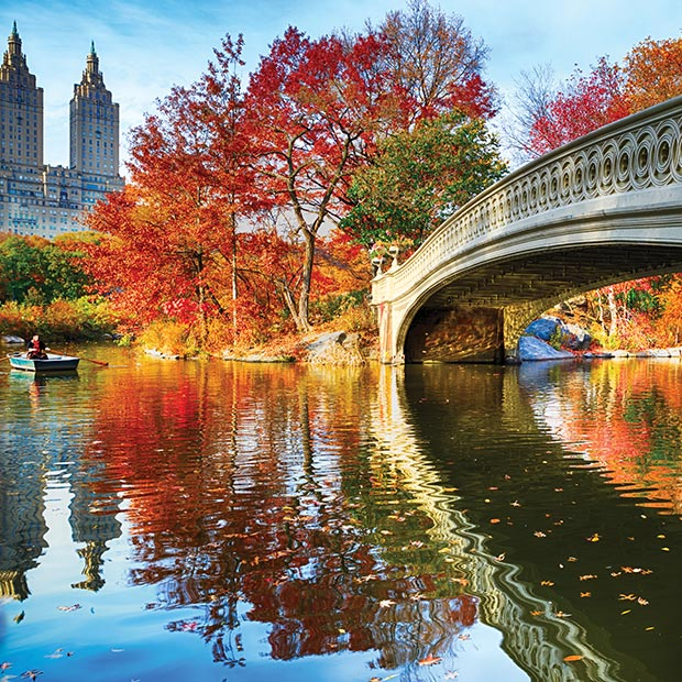 free-things-to-do-nyc-central-park