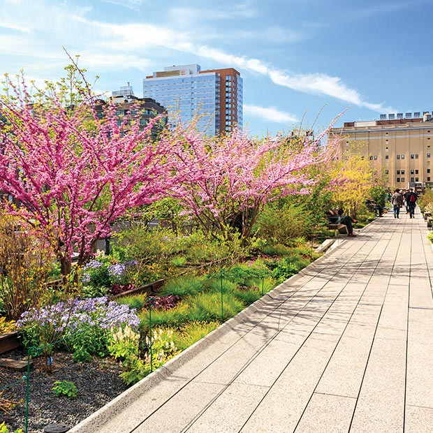 free-things-to-do-in-nyc-walk-the-high-line
