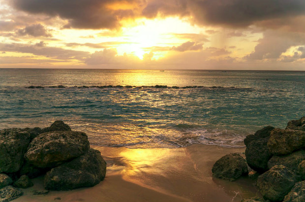 5 Things To Try In Speightstown Barbados