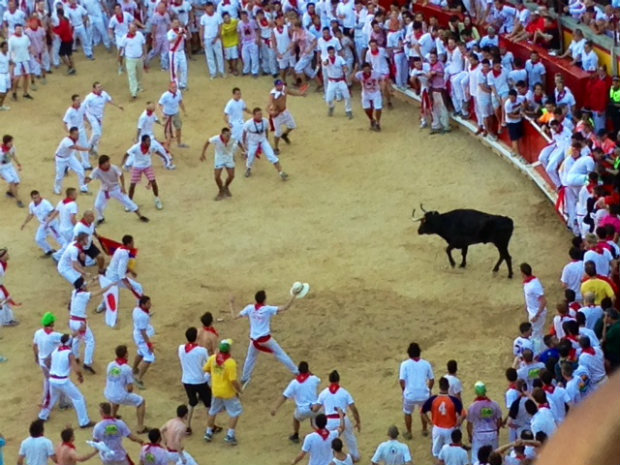 Running of the Bulls Spain