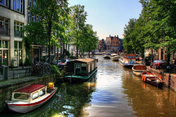 Riverboats in Amsterdam