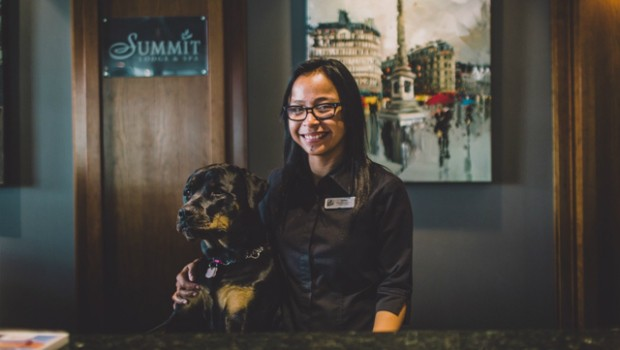 Summit pet friendly hotel_Dog