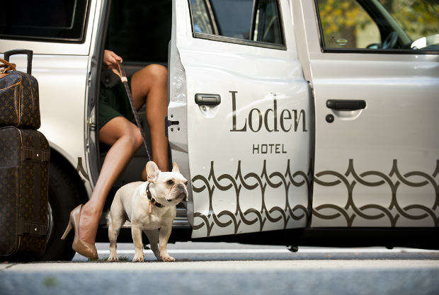 The Loden Hotel pet friendly