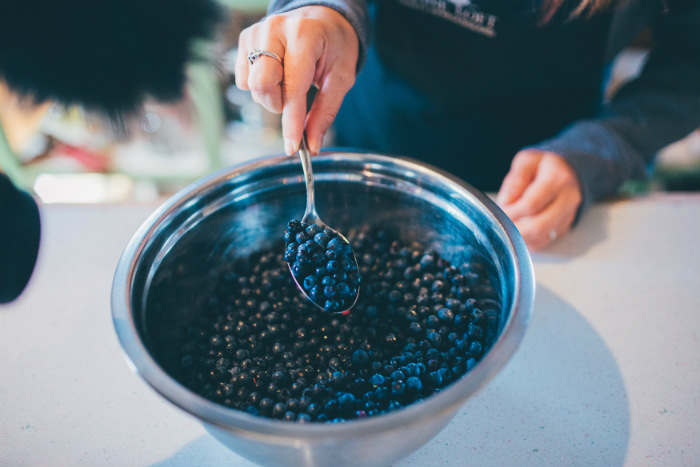 Newfoundland Food fresh blueberries