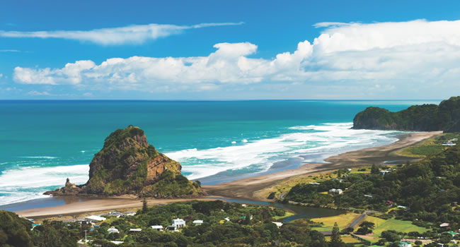 Lion Rock Piha New Zealand