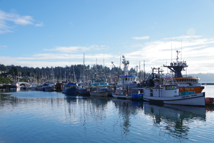 newport harbour oregon