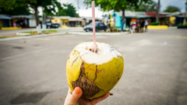 Coconut with a straw in Jamaica