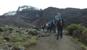 group hiking kilimanjaro