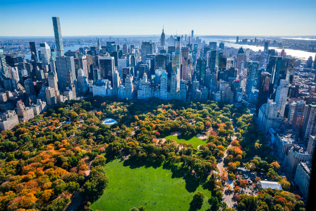 manhattan central park fall foliage
