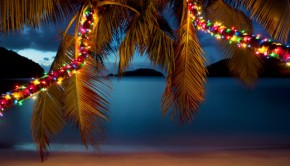 christmas lights caribbean beach