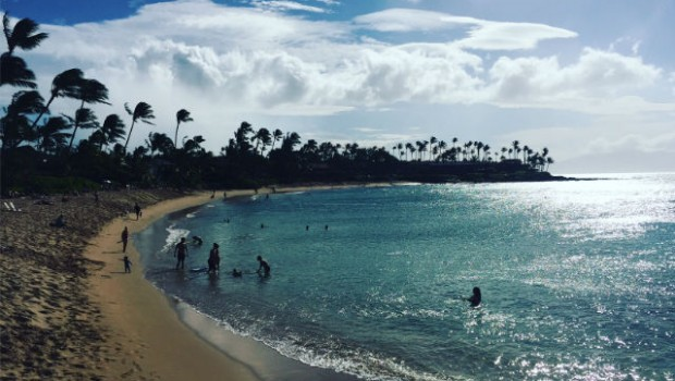 swimmers in a sparkling blue beach in hawaii