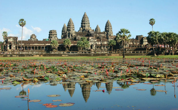lilypads on a pond in front of a temple in angkor wat, cambodia