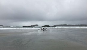 surfers on mackenzie beach in tofino, british columbia