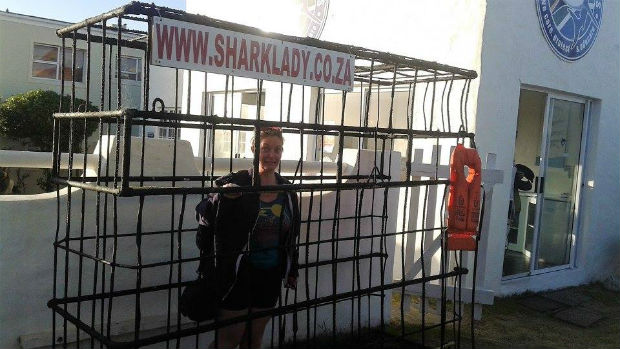 great white shark cage