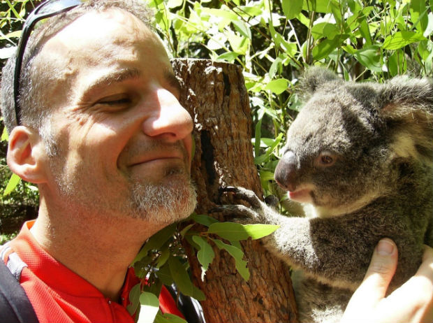 hug an aussie day april 26 koala dave emilio