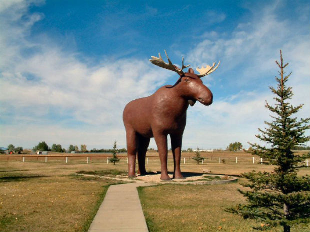 mac the moose giant statue moose jaw saskatchewan
