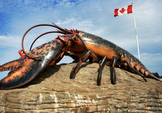 worlds largest lobster sydney cape breton island giant lobster