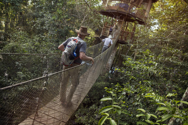 suspension bridge amazon andes g adventures tour