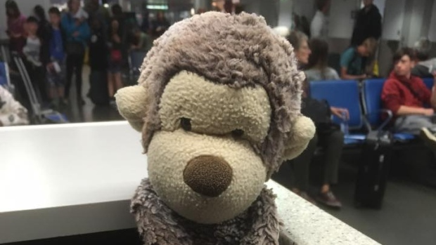 missing westjet monkey stuffed toy missing lost and found funny