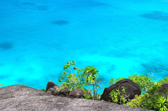 Discover the many hidden treasures of the Caribbean.