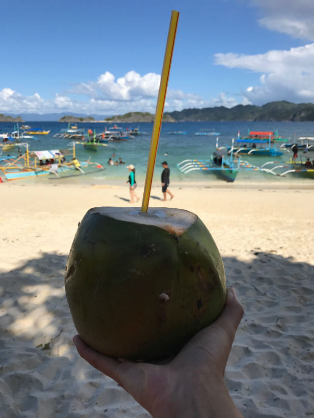 coconut on the beach in the caramoan philippines