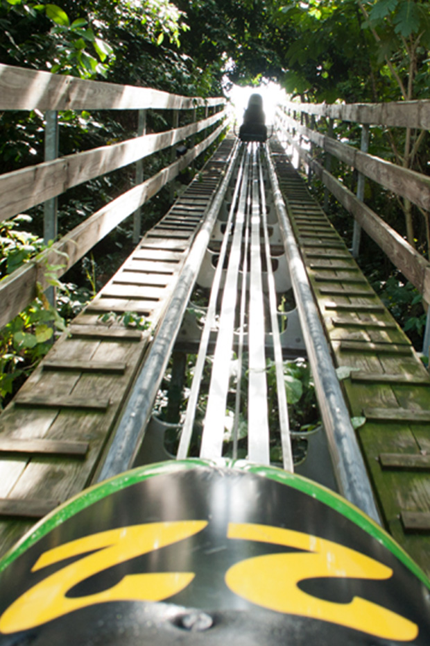 top-5-jamaica-excursions-mystic-mountain-bobsled