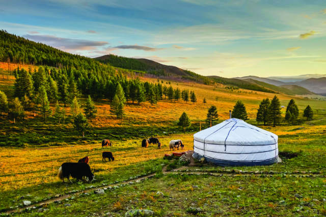 yurt in mongolia