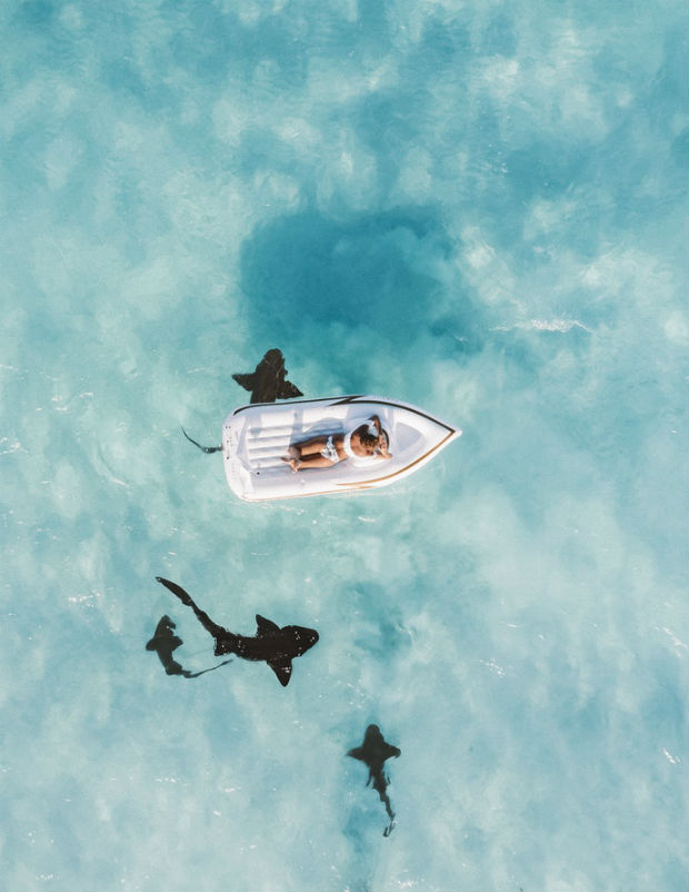 is-cuba-travel-safe-stunning-aerial-view-of-sharks-swimming-beneath-raft