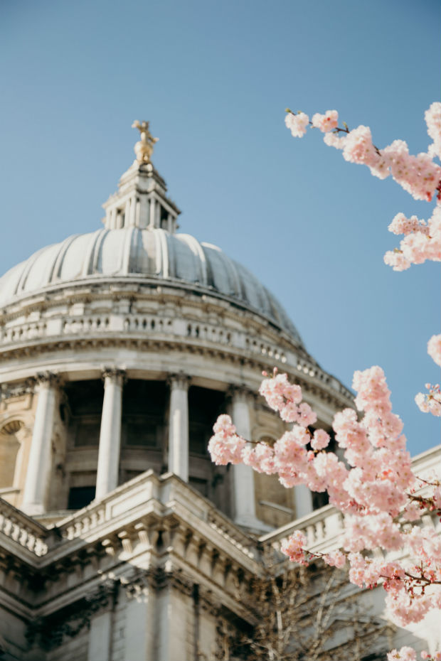 st-paul's-cathedral-london-uk-dome-against-blue-sky-pink-cherry-blossoms-in-foreground-london-in-spring