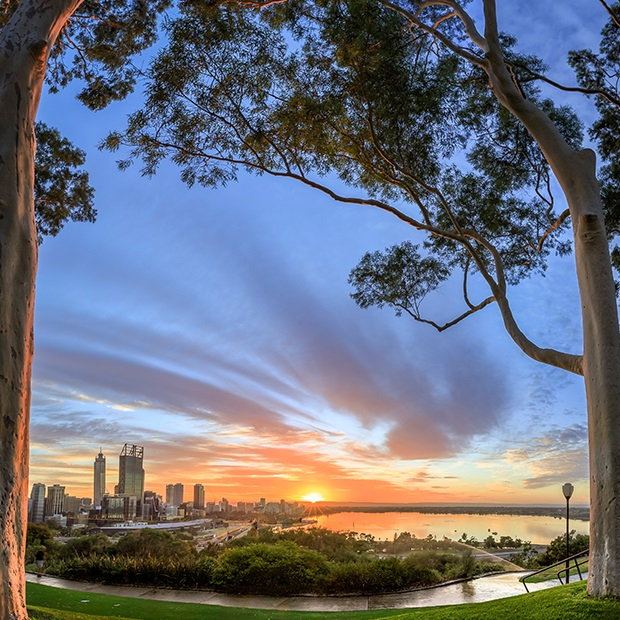 australias-west-coast-kings-park-perth