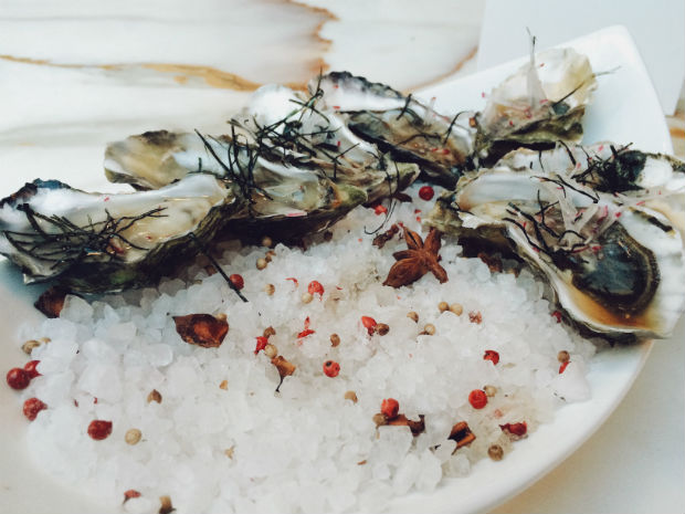 miami-events-seafodd-festivals-in-october-delicious-plate-of-fresh-oysters-on-bed-of-sea-salt