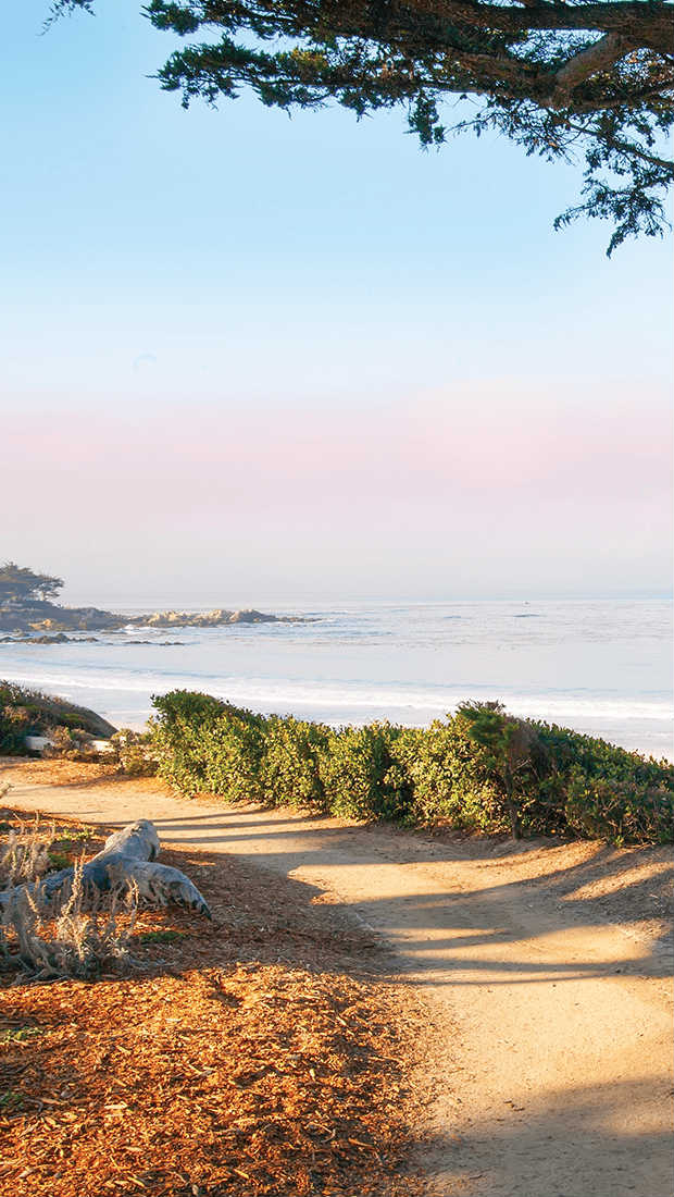Best beaches in California - Photo of Caramel City Beach