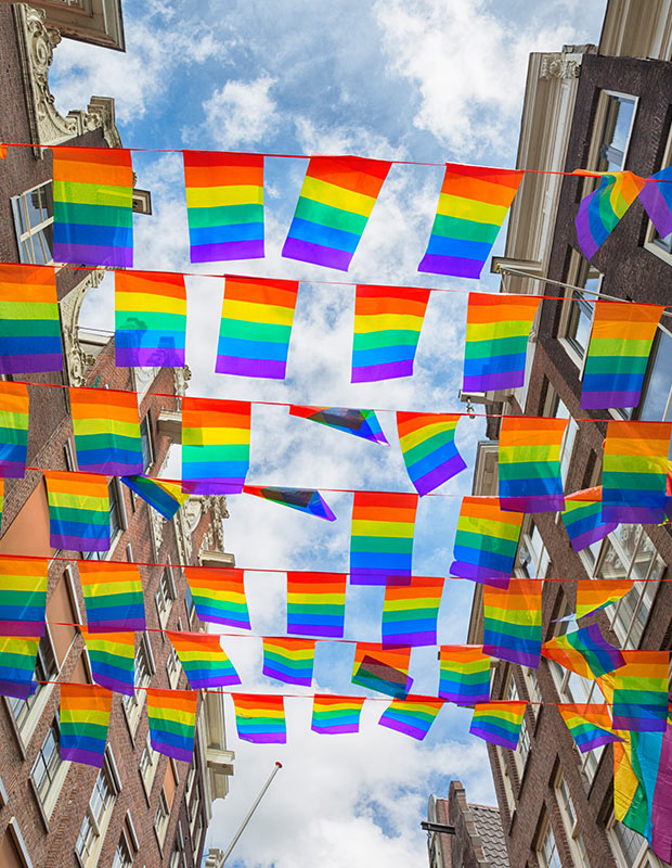 rows-or-rainbow-pride-flags-fly-high
