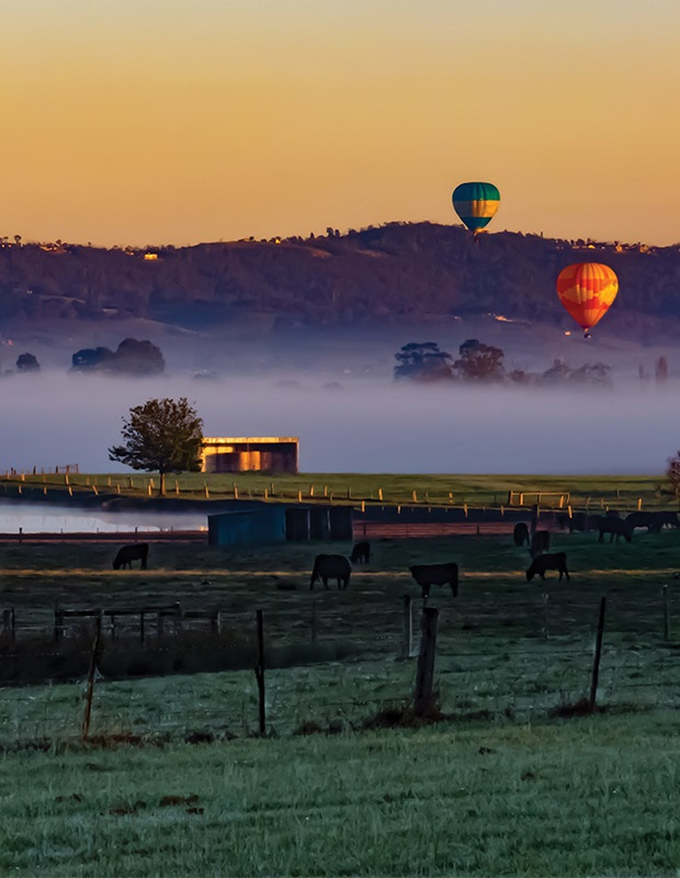 Valley Wineries Hot Air Balloon - Melbourne, Australia