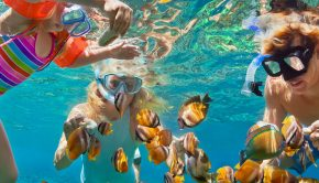 Cozumel Snorkelling Tours