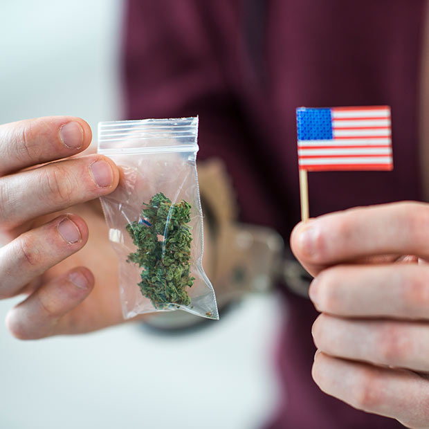 travelling with weed to the U.S.A.