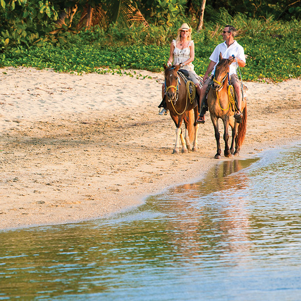 things to do in Punta Cana Horseback Riding Tour Dominican Republic