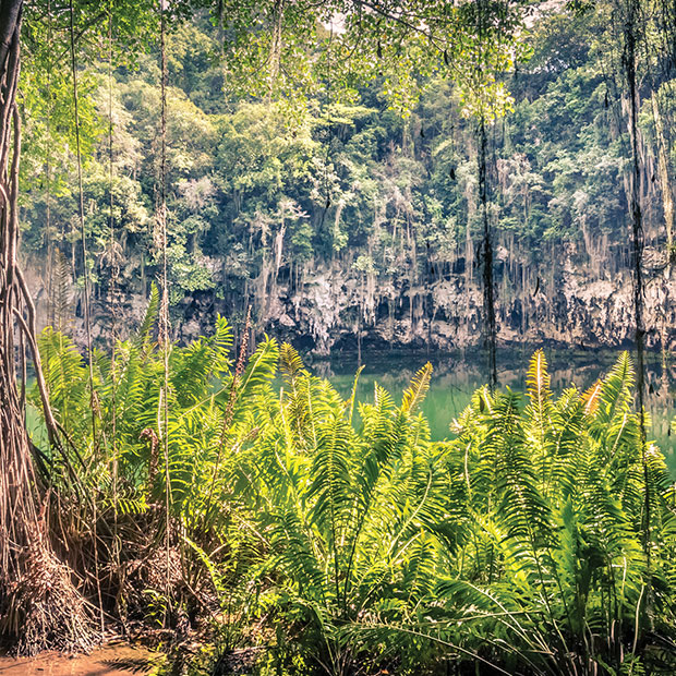 things to do in Punta Cana visit Indigenous Eye Ecological Park Dominican Republic