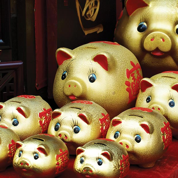 year-of-the-pig-piggy-bank-lunar-new-year-2019-