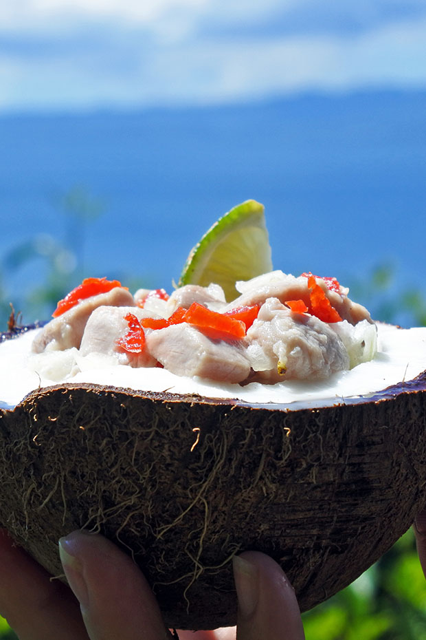 a fresh coconut bowl filled with pork and lime